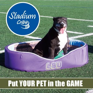 Stadium Cribs to bring NCAA arena-themed pet beds to furry fans